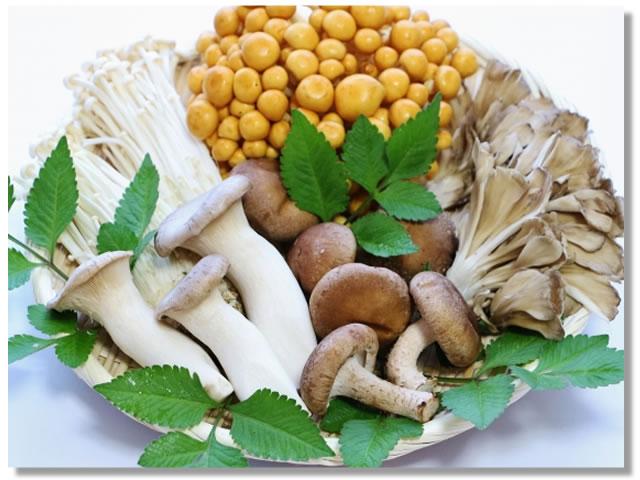 不溶性食物繊維の多いきのこ類であるエリンギ、しめじ、まいたけ、なめこなど