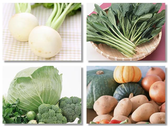消化の良い野菜はかぶ、ほうれん草、キャベツ、じゃがいも