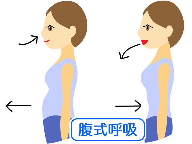 腹式呼吸の方法