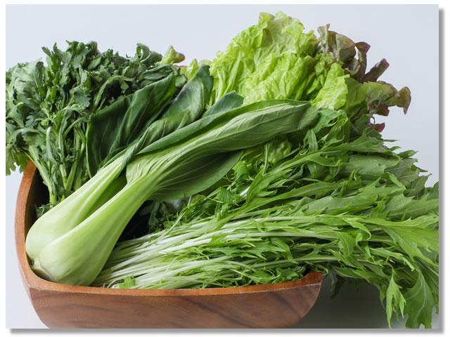 イソチオシアネートの多い野菜