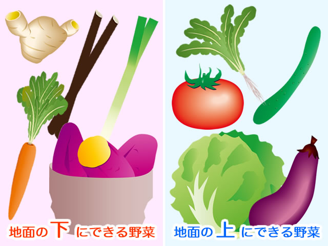 体を温める食べ物と冷やす食べ物