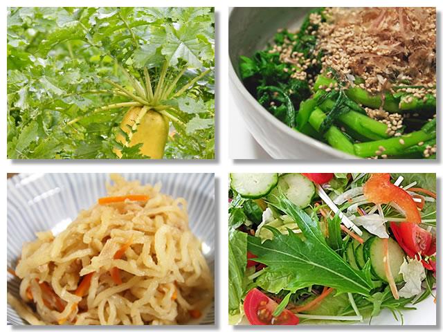 カルシウムの多い野菜
